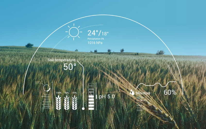 Artificial Intelligence Agriculture