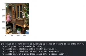 image caption generator - example