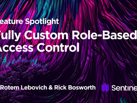 Feature Spotlight: Fully Custom Role-Based Access Control