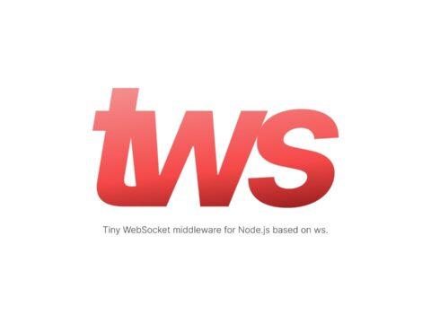 tinyws — tiny WebSocket middleware for Node.js